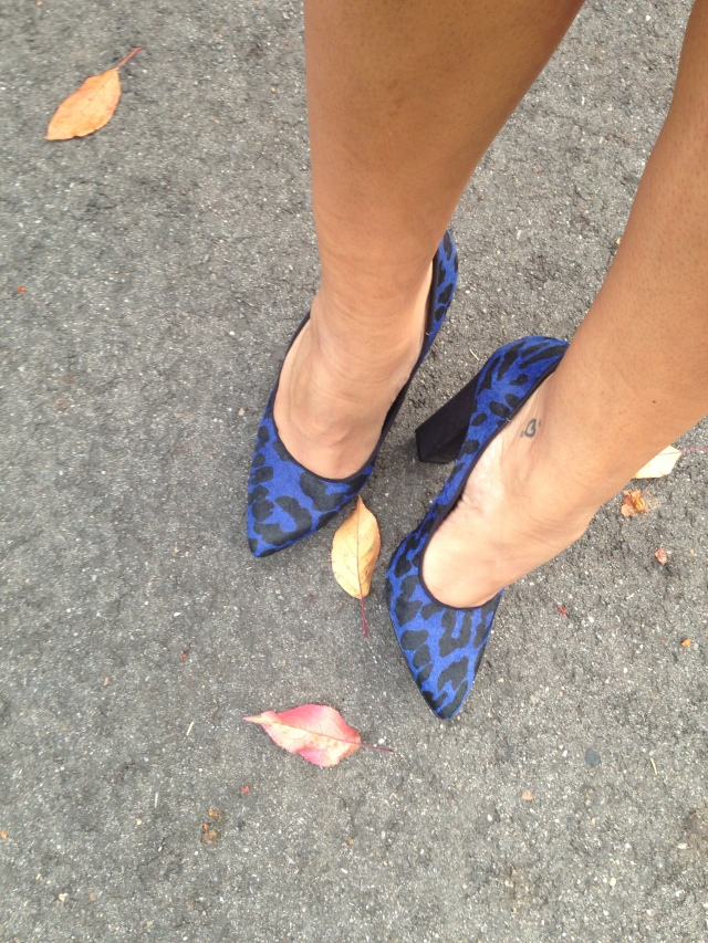 Blue leopard print pumps from Aldo