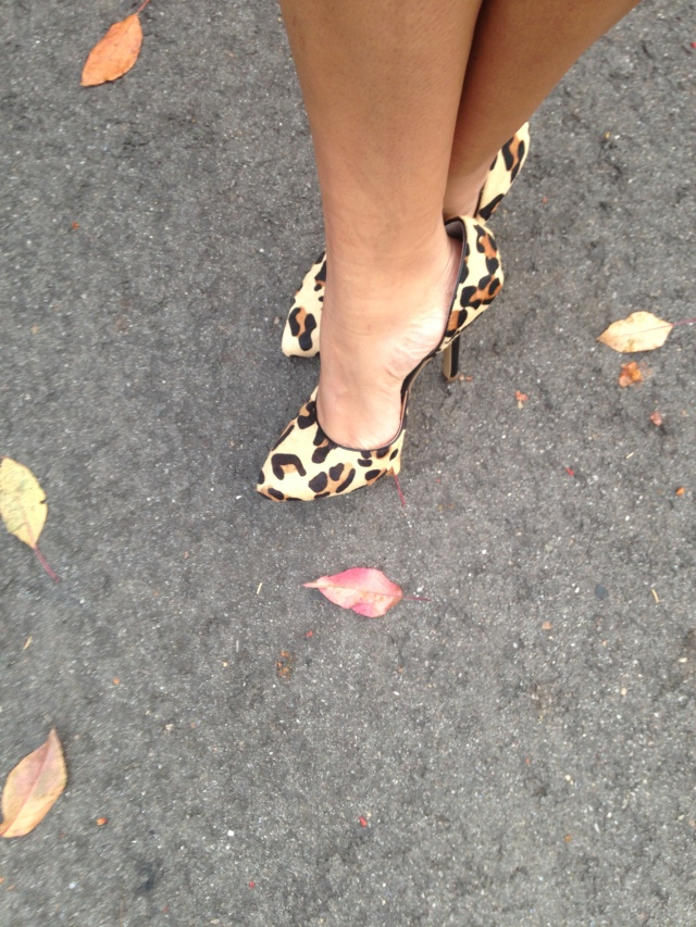 BCBG Paris leopard print stilettos from DSW